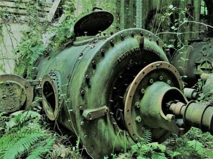 """Una central """"detenida en el tiempo"""" en mitad del bosque asturiano"""
