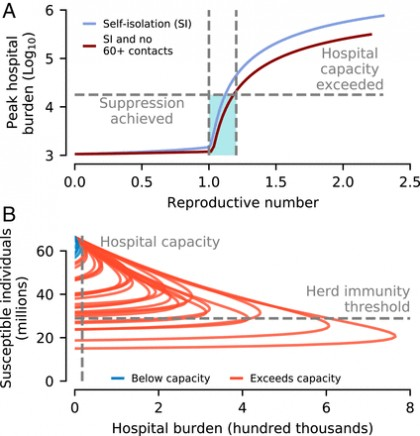 Las dinámicas de transmisión revelan la impracticabilidad de las estrategias de inmunidad colectiva de COVID-19 [ENG]
