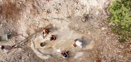 Encuentran el fósil de un gran dinosaurio en Cuenca