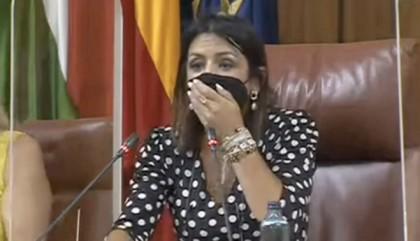 "Una rata ""XXL"" irrumpe en el Pleno del Parlamento andaluz"